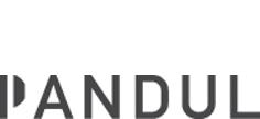 pandul-logo